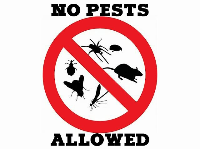 No Pests Allowed
